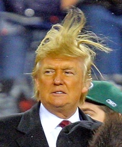 DONALD Trump: Rained out, windblown and washout. (jeromiewilliams.com)